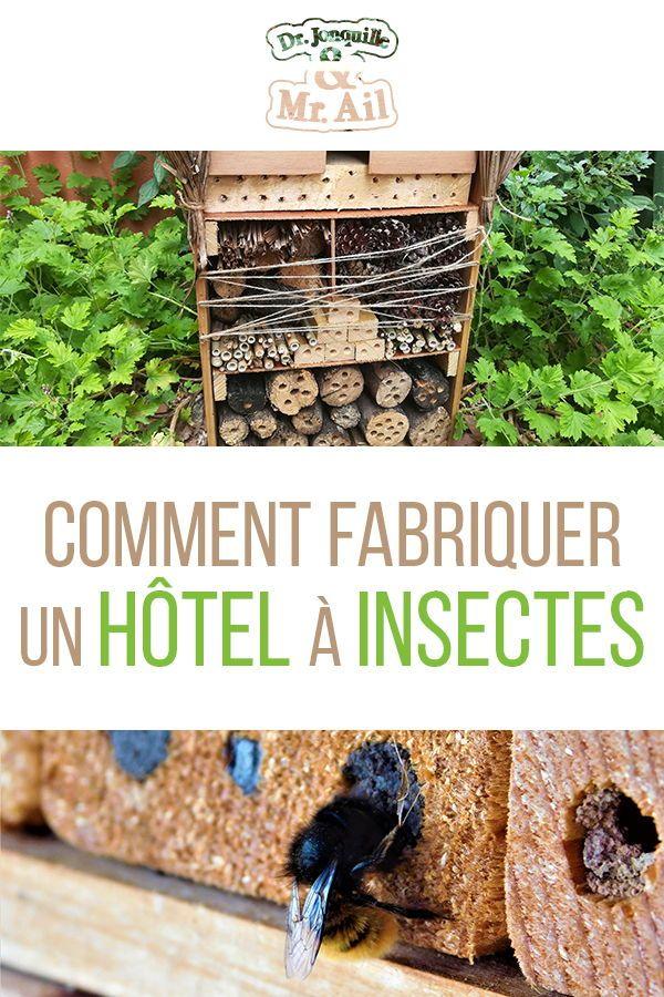 Alors comment fonctionne un Hôtel à Insectes? Qu…