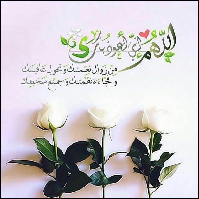 اللهم إني أعوذ بك من زوال نعمتك وتحول عافيتك وفجاءة نقمتك وجميع سخطك Islamic Pictures Place Card Holders Cards