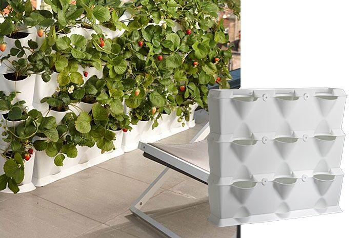 die 25 besten ideen zu indoor vertikale g rten auf. Black Bedroom Furniture Sets. Home Design Ideas