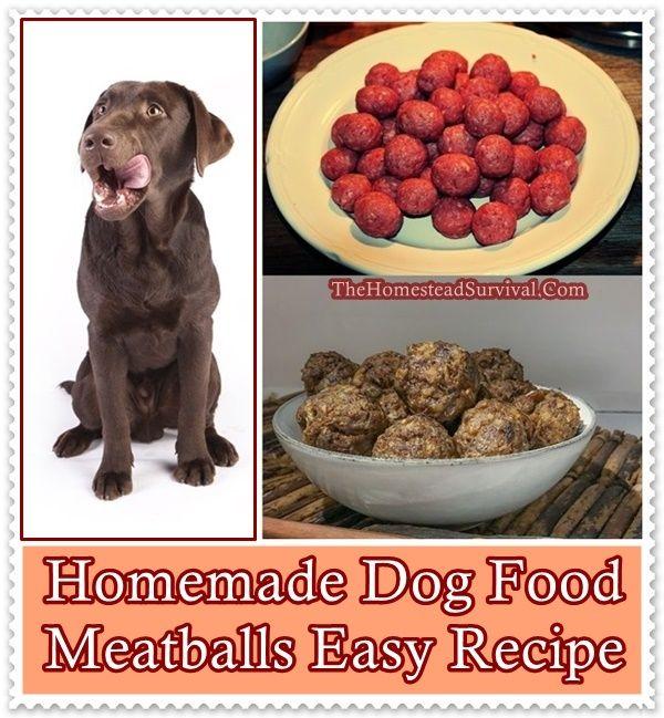 Homemade Dog Food Meatballs Easy Recipe The Homestead Survival