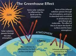 greenhouse effect #greenhouseeffect