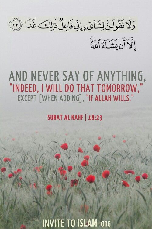 In syaa Allah