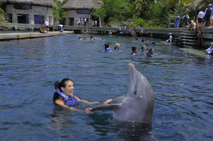 Pudieron vivir la experiencia de tener un contacto íntimo con los #Delfines
