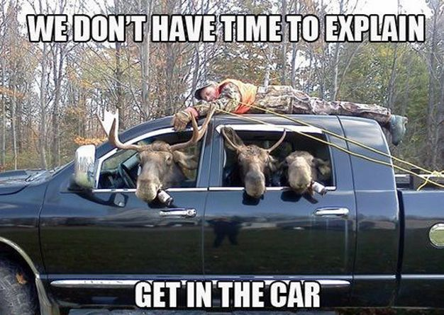 """""""Get the hell outta here. GO, GO, GO."""" Click on the image for '15 of the Funniest Car Memes' #lol #spon"""