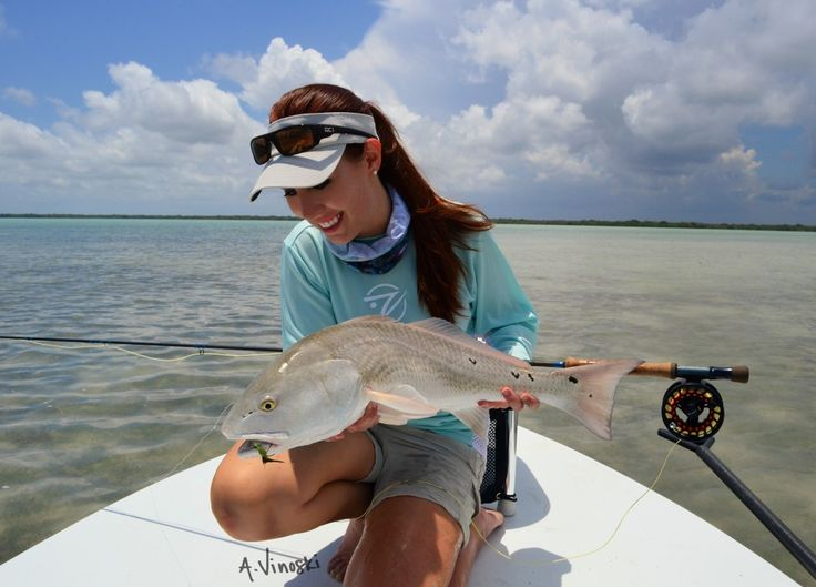 43 best saltwater fish images on pinterest fishing for Key largo fishing