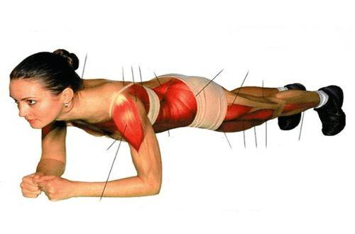 Lankkuliike harjoittaa monia eri lihaksia kehossa ja se on erinomainen apu vartalon kiinteyttämisessä.