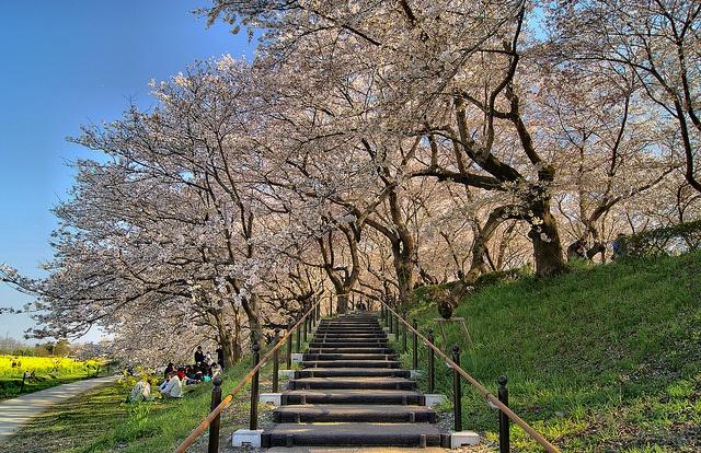 Joe lived here too, I'd like to walk up these steps with him.