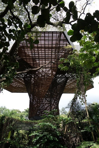 Orchideorama, the orchid pavilion, is is an innovative steel and wood building by Plan B Architects. It is quite eye-catching.  The Official Martha Stewart Blog - The Martha Blog