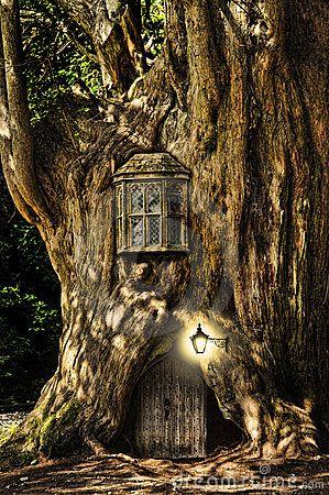 Fantasie-Märchen-Minihaus im Baum …
