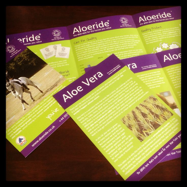 2 sets of leaflets for Aloeride. A 6pp A4 & a 4pp A4 on 170gsm Silk, creased and folded ready to send to their prospective customers. Supplied with nice Lime Green envelopes aswell.