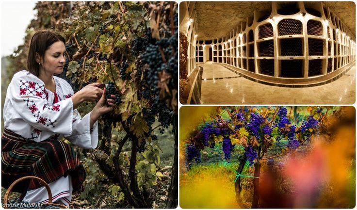National Wine Day in Moldova