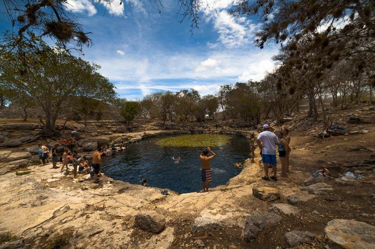 #cenote #dzibilchaltún #mérida #mexico #yucatan #merida  #iphone6 #carlotafernandez #googlemaps #googleviews #carlotaconbotaz #carlotaconbotas #carlotaconbota #carlafernandez