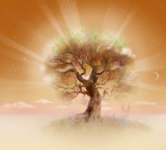 To receive more from the Tree of Knowledge
