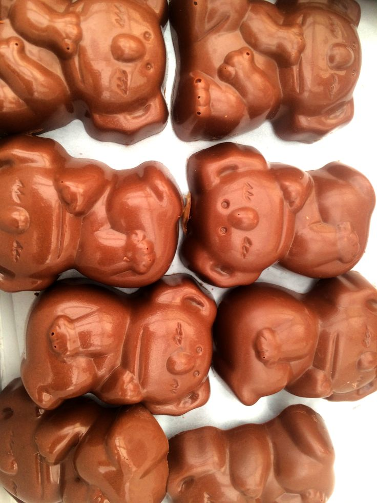Best Caramello Koalas in the World by Perfection Chocolates & Sweets in Rose Bay