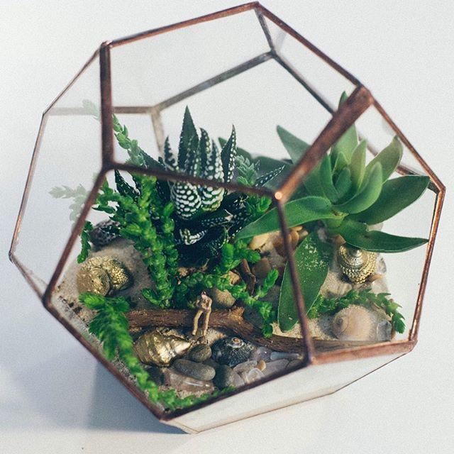 Маленький додекаэдр, диаметр 12 см, миниатюрное украшение рабочего стола, или любого другого стола или пространства✨ #florarium #terrarium #leviflower #подарок #декор #додекаэдр#флорариум#террариум#флорариумссюжетом
