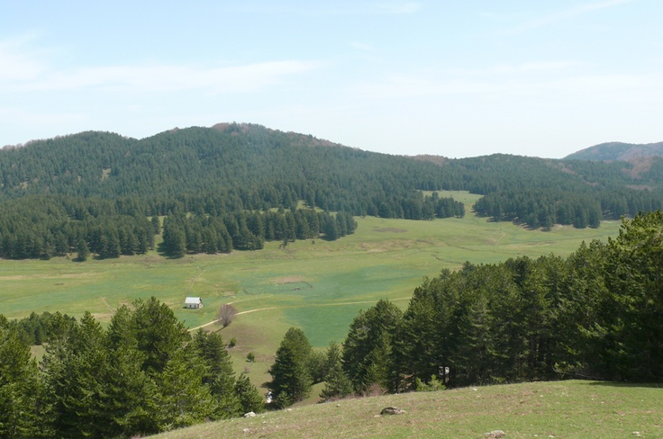#Trekking in #Sila #Calabria: Macchialonga area in the Great Sila