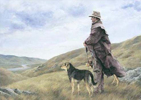 As Far as the Eye can See by Julie Greig for Sale - New Zealand Art Prints