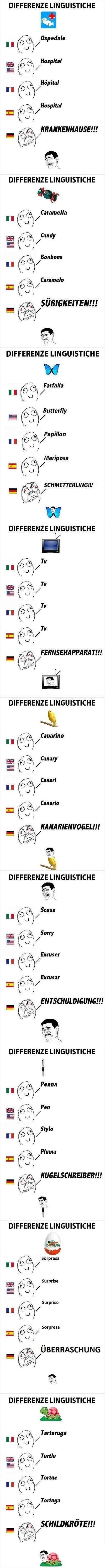 Et dire qu'on nous vendait l'allemand comme une langue accessible au collège!