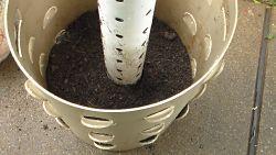 Coltivare fragole in verticale