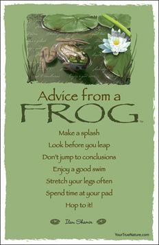 Advice From A Frog Animal Spirit Guides Frog Pictures