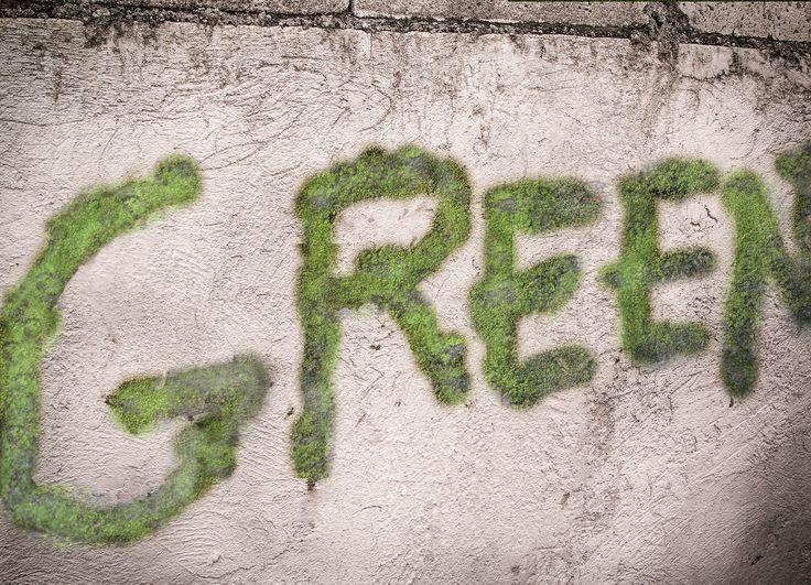 How to Make Moss Graffiti -- via wikiHow.com  Along back wall
