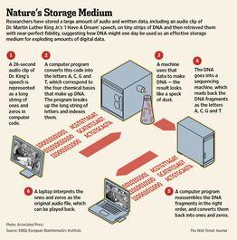 Storing digital data in DNA