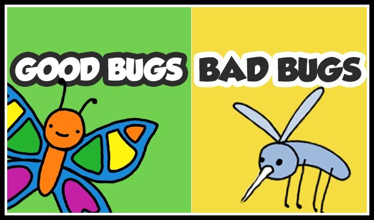 In this FREE Good Bugs, Bad Bugs game from Teaching Mama, kids learn how bugs are good or bad. There are cards with different scenarios on each o