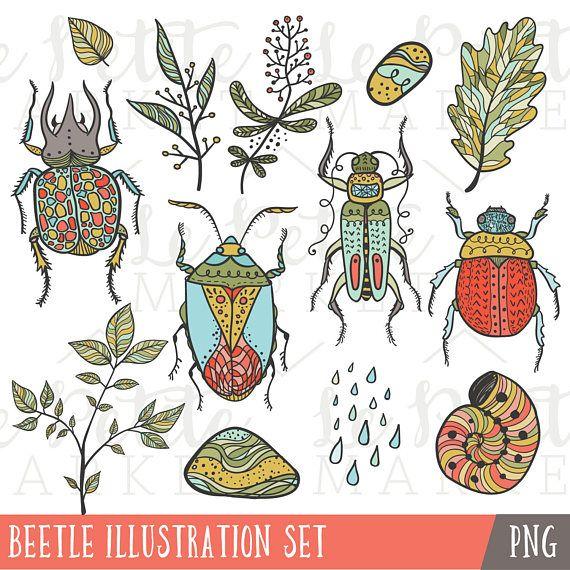 Conjunto de imágenes prediseñadas ilustraciones escarabajo