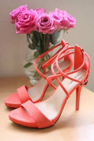 Beautiful Shoes!! Not To Mention The Beautiful Pink Roses In The Background Too! <3 <3 (Zara)