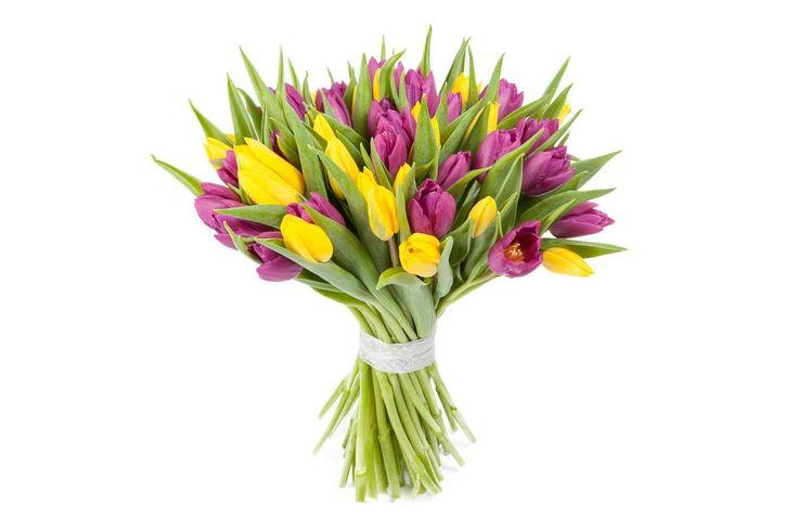 крутой Букет 51 тюльпан, желто-фиолетовые  #Букеты #Хитыпродаж,Букет51тюльпан,желто-фиолетовые