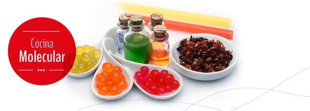 Mejores 30 im genes de gastronomia molecular en pinterest for Padre de la cocina molecular