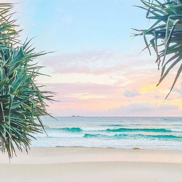 One more sleep until we're en route to Byron Bay for six days of meditation yoga beach walks and the most delicious organic food prepared with love by the amazing Deb. . We're booked up this year but we still have a few spots free for next year.