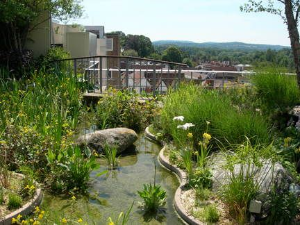 Amazing   Roof gardens and balconies / Royal Horticultural Society   picture