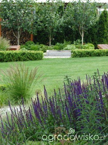 Małymi krokami bo własnymi ręcami... :* - strona 1773 - Forum ogrodnicze - Ogrodowisko