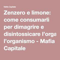Zenzero e limone: come consumarli per dimagrire e disintossicare l'organismo - Mafia Capitale