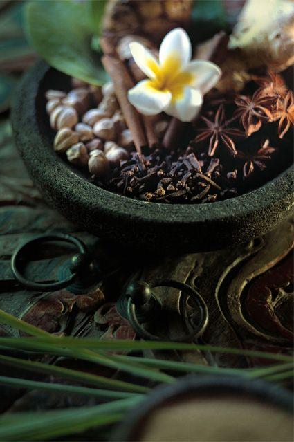 Jamu Traditional Spa Bali, Bali Spa