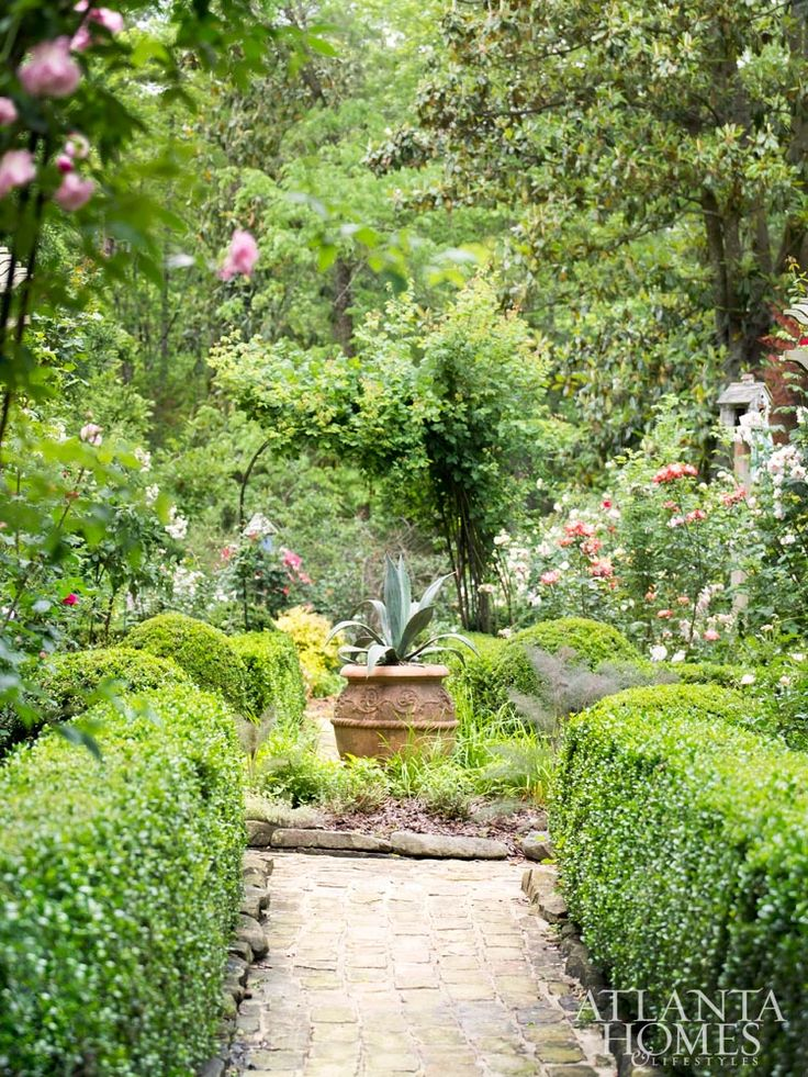 The Tim Stoddard-designed rose garden is framed by clipped boxwood hedges.