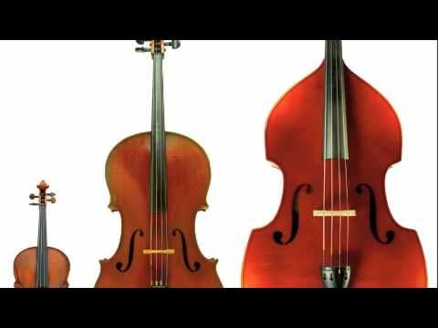 ▶ The String Family - A Digital Story - YouTube
