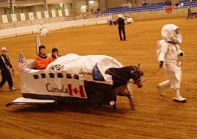 space shuttle horses arse - photo #21