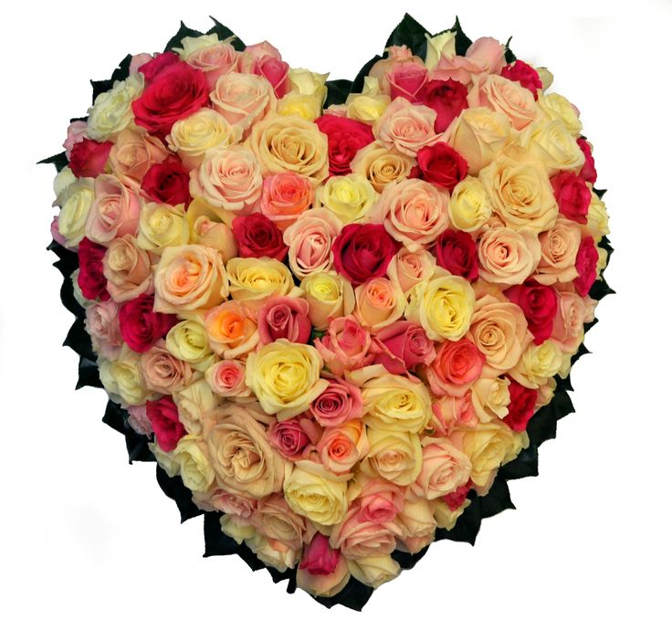 Rose heart wreath - Donvale Flower Gallery