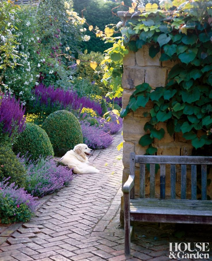 A traditional garden in Sussex, England