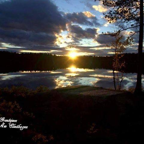 #finnskogen #naturfotografie #nature #utno #norway #norsknatur #visitnorway #jakt #hunting #fishing #solnedgang #magisk #amazing #country #follow4follow #followme #ulbolig #bestcap2day #yrbilder #yr #tv2været #forest #icefishing #nrkøstnytt #innlandet #vghelg #norgesferie #villmarksliv #friluftsliv #amazingworld #country