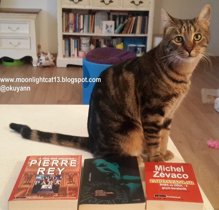 moonlightcat13: Eganba Kitaplarım