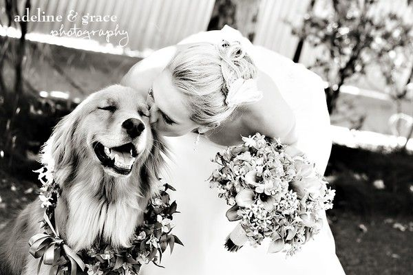 Bride and her dog :). Look at the dog's face. This is precious.