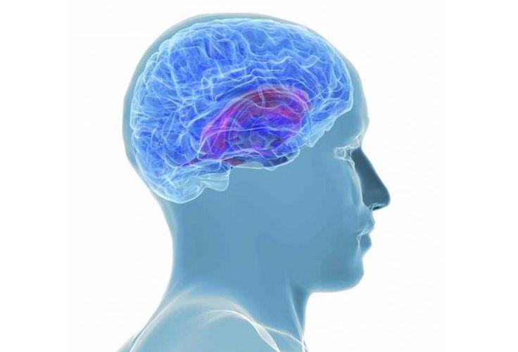 Η νόσος Alzheimer και η στεφανιαία νόσος έχουν την ίδια αιτία