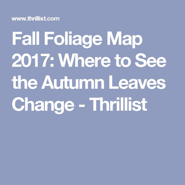 Fall Foliage Map 2017: Where to See the Autumn Leaves Change - Thrillist