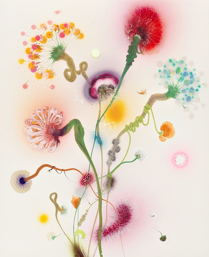 Thierry Feuz True Technicolour Beauty   inspiration