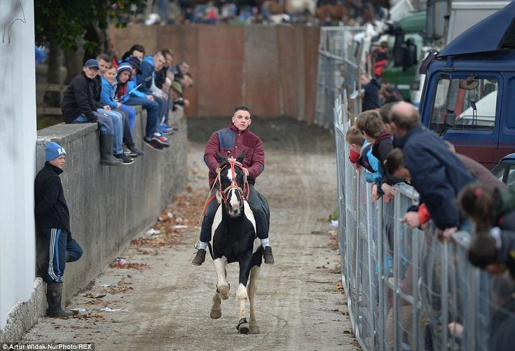 Another rider tests out his horse for one of the short racing events, at the Ballinasloe H...