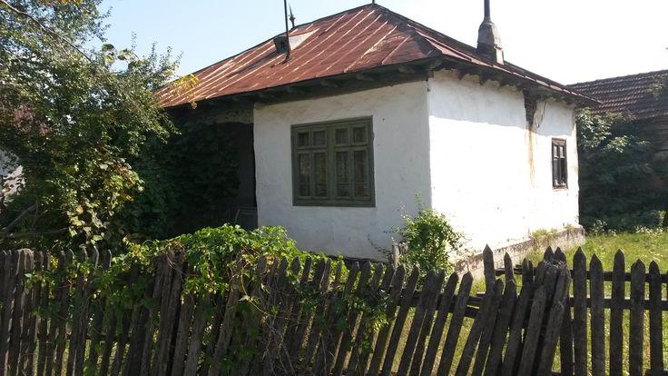case Tisau-Hales, Jud Buzau 9
