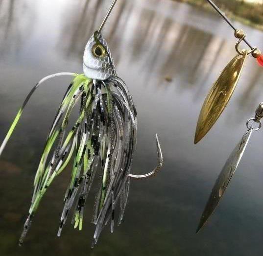 10 Top Summer Tactics for Bass - World Fishing Network